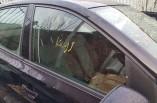 VW Polo MK5 door window glass drivers front 5 door 2010